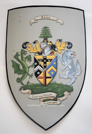 Sport crest shield, rugby metal crest shield