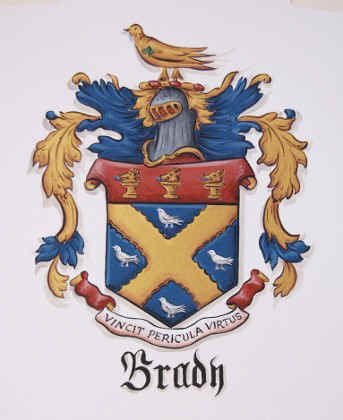 Brady Coat of Arms painting watercolor paper